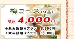 梅コース 4,200円